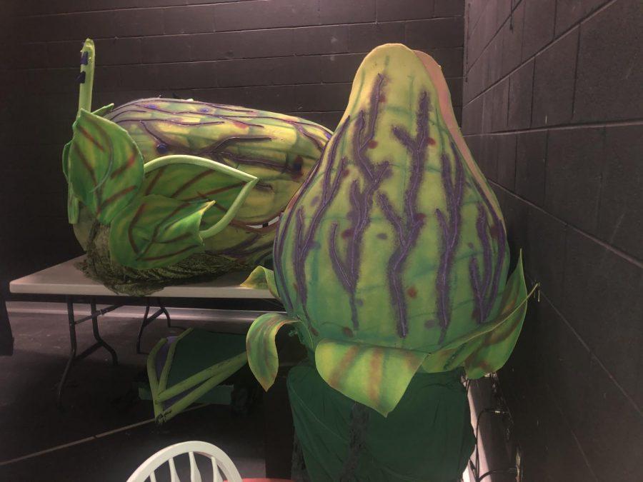 SSU Little Shop of Horrors large plant/costume